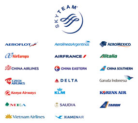 Skyteam member logos